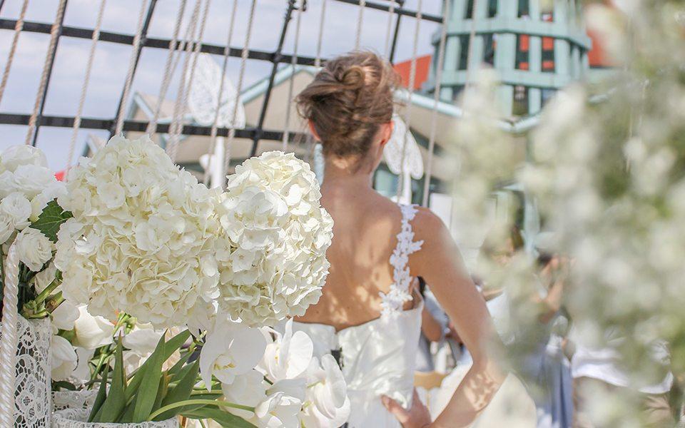 bride facing behind onboard royal albatross