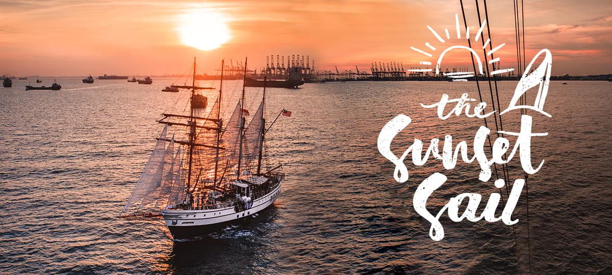 sunset sail royal albatross