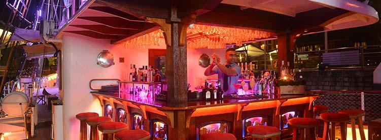 predinner on monkey bar royal albatross