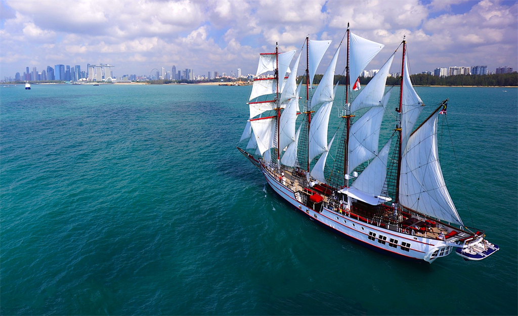 royal albatross sailing on blue water with singapore skyline view