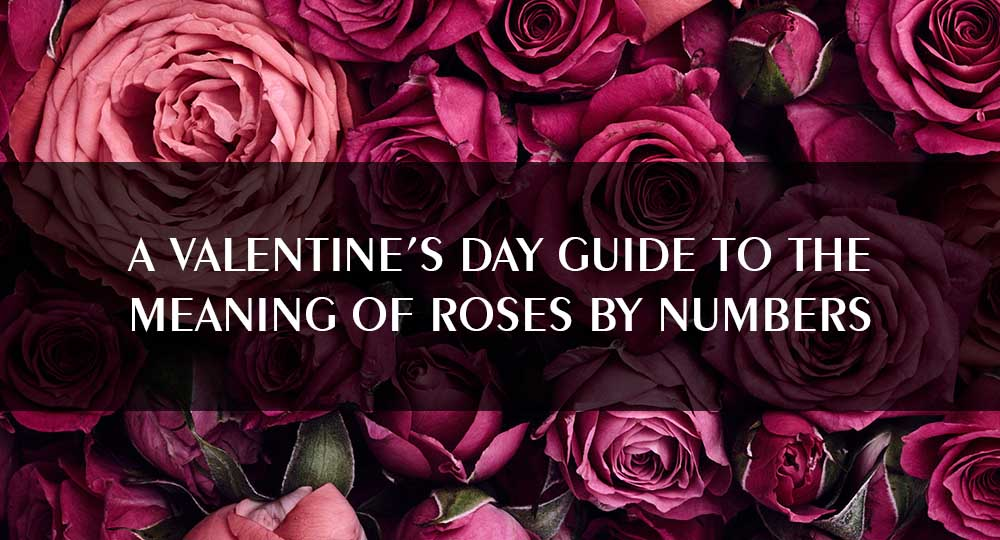 A Valentine's day guide to the meaning of roses by numbers