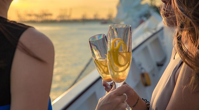 cocktail cheers on royal albatross