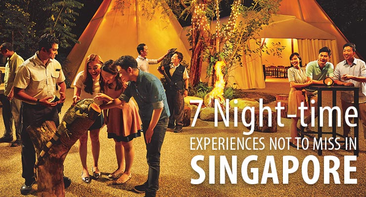 7 night time experience in singapore royal albatross