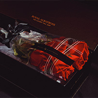 rose gift in a box royal albatross