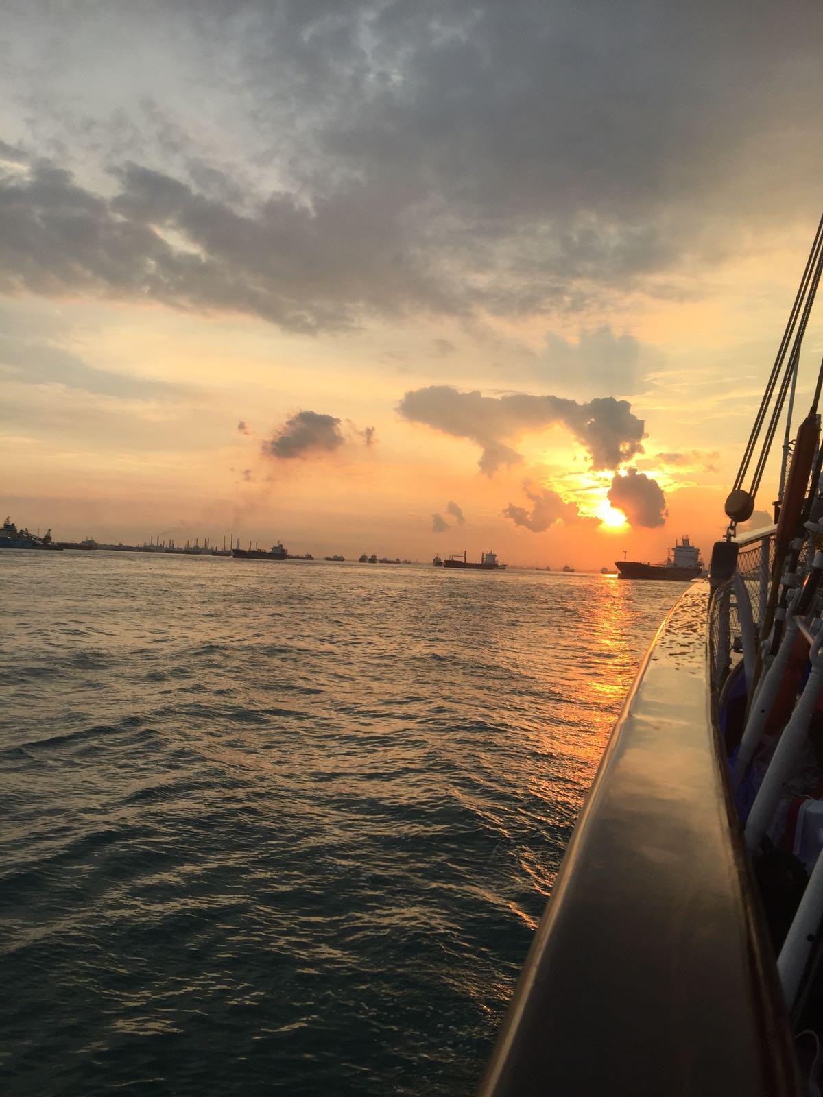 sunset-royal-albatross-singapore