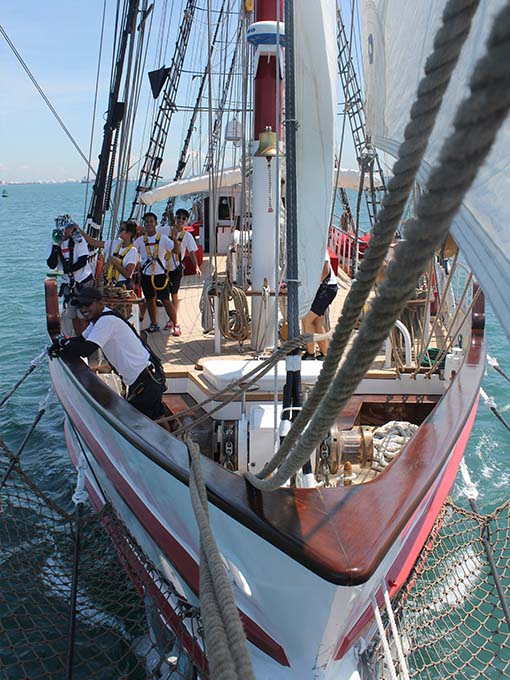team building activities onboard royal albatross