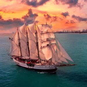 Royal Albatross Sunset Sail Cruise